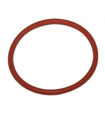 Lombardini Focos e Termostato de Progresso O-Ring